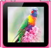 Новый в заводской упаковке оригинальный MP3 плейер Apple iPod nano 8GB Pink, розовый.jpg